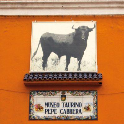 Museo Taurino de La Línea de La Concepción