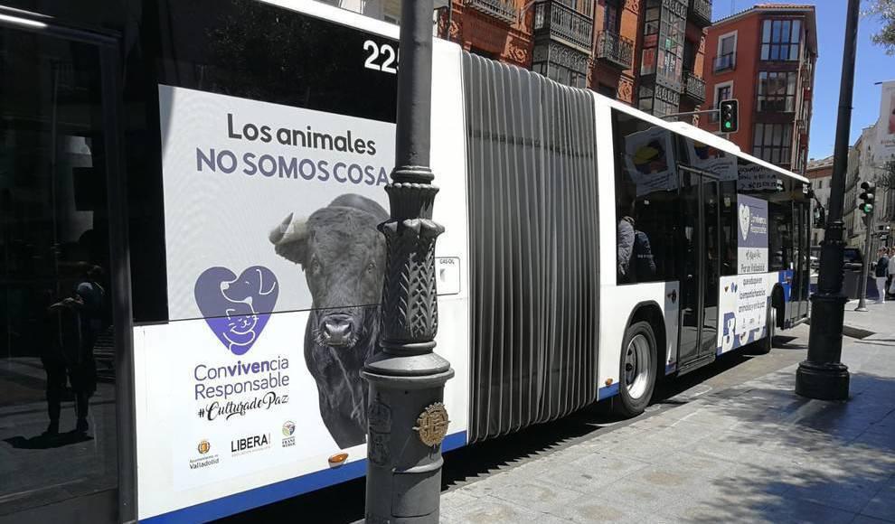 Carta abierta a Óscar Puente, Alcalde de Valladolid