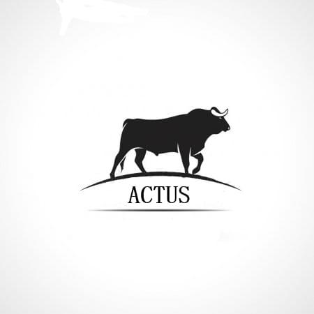 Nace ACTUS, la asociación cultural taurina universitaria de Sevilla