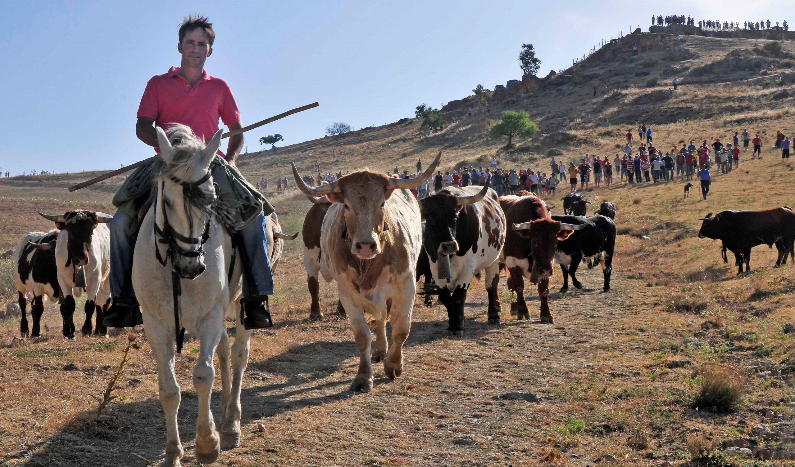 Las fiestas taurinas Gor y Jérez del Marquesado, camino de ser declaradas fiestas de interés turístico de Andalucía